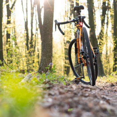 bike lizzano