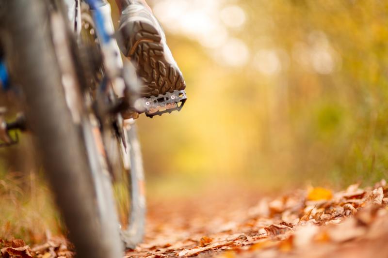 bicicletta alto reno (1)