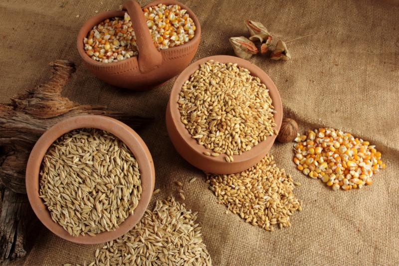 cereali antichi
