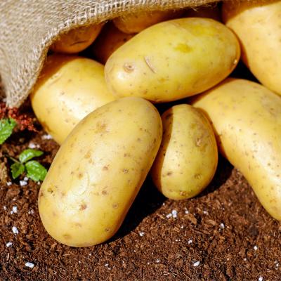 patata di tolè